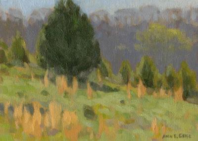 Ann Geise-Cedar Ridge