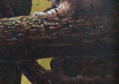 DeVere Burt-Shadow Master Bobcat