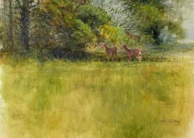 Morten E. Solberg-Edge of the Woods